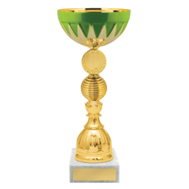 Кубок K1599